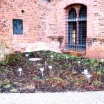 Gartengruppe beginnt ihr Gartenjahr