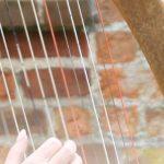 harfe-konzert-havelberg-dom
