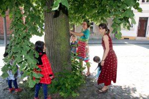 2016-05-06-stadtkirche-kindergottesdienst-baum-IMG_6220-900p