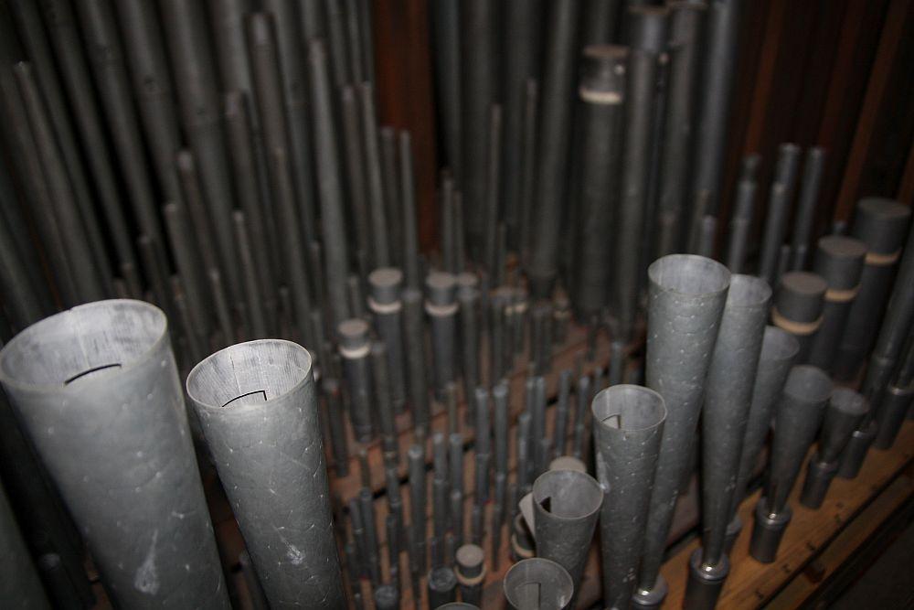 Scholtze-Orgel im Dom St. Marien - Pfeifen