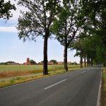 Blick auf das alte Dorf an der Havel